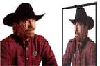 Chuck Norris Jokes - Jokes