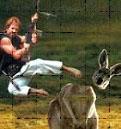 Chuck Norris Hunting Joke
